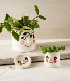 In love with these planters from Tuesday Bassen!