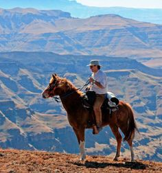 Horse on a rugged trail ride in Lesotho, South Africa
