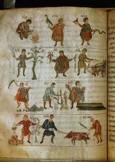 The Chronicle of the Months, an early Carolingian manuscript. The illustration shows the labours of each month. From the abbey of St. Peter in Salzburg. Codex 387, folio 90 verso   Oesterreichische Nationalbibliothek, Vienna, Austria