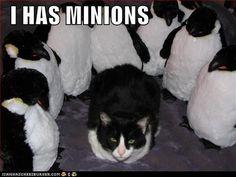 I want minions.