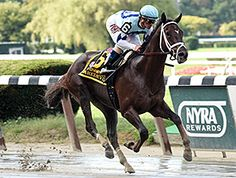Favored Daredevil cruised to victory in the $500,000 Champagne Stakes (gr. I) on a sloppy track at Belmont Park Oct. 4, 2014 handing trainer Todd Pletcher his third consecutive win in the prestigious race.
