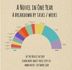 A Novel In One Year