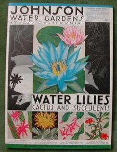 1935 water garden catalog....water liles...cactus...succulents...