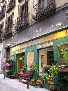 La Real, Flores-Plantas, Madrid, Spain
