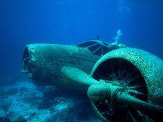 Sunken Plane in Aruba.  I love the peek-a-boo scuba diver!
