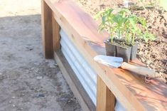 How to Build Raised Garden Beds With Corrugated Metal Metal Raised Garden Beds, Raised Planter Boxes, Building Raised Garden Beds, Diy Planter Box, Raised Beds, Raised Vegetable Gardens, Vegetable Gardening, Container Gardening, Garden Yard Ideas