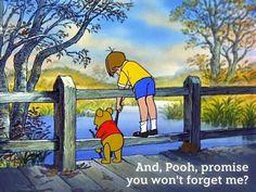 Pooh Bear: oh I won't, Christopher, I promise.