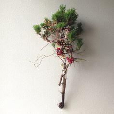 生花の三光松 サンキライ 竹 シルバーブルニア ドライの松笠 桐の蕾 月桃 フィビキア シダ水引 プリザーブドフラワーのモス お正月用の、松飾りです。 三光松... ハンドメイド、手作り、手仕事品の通販・販売・購入ならCreema。