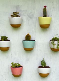 A wall of plants. Genius.