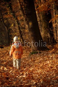 child walking at forest