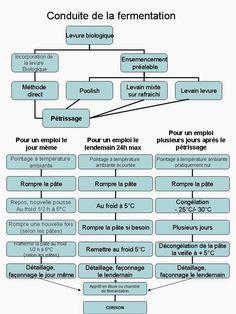 La levure fraîche   A savoir pour l'examen du CAP Pâtissier (référentiel: S2.9 - La levure biologique)   Citer l'origine de la levure bio...