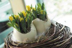 Osterdeko * Ideen für Osterdekoration * Osterei * Straußenei * Blumen * Blumenbüro Holland