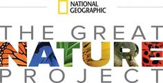 Great Nature Project from NatGeo  post nature photos from around the globe  http://www.greatnatureproject.org/