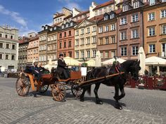 horse and cart warsaw