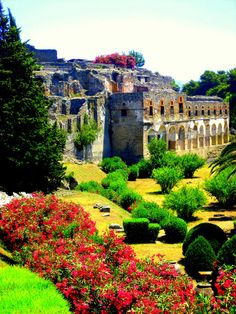 Ruins and gardens of Pompeii, province of Naples, Campania region Italy .