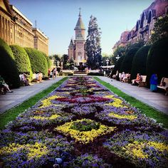 """Beautiful square in the center, opera theater on one side, main church. Beautiful World, Beautiful Places, Travel Around The World, Around The Worlds, Interactive Board, Tunnel Of Love, Colour Photography, Bucharest, Scenery"