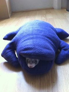 Haha makes me want a ferret just to make stuffed animal sleeping bags for it. Cute.