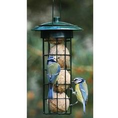 Suet Ball Feeder - Harrod Horticultural - The Suet Ball Feeder provides a simple yet functional solution for safe suet ball feeding; ideal if the local cat population have got wise to placing fat balls on the ground. £2.95