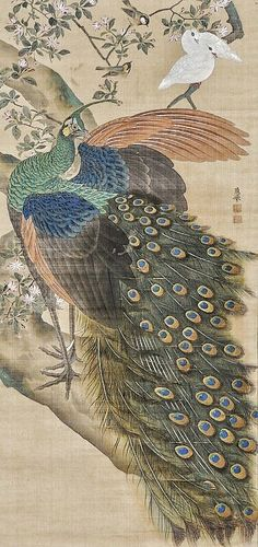 Japanese Painting, Chinese Painting, Chinese Art, Fine Art Drawing, Art Drawings, Peacock Painting, Peacock Decor, Japanese Artists, National Museum