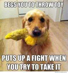 My baby does this ALL the time!!