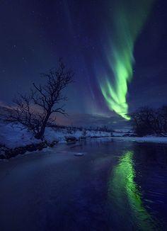 Audun Rikardsen Arctic Coast Photography Audun Rikardsen,...