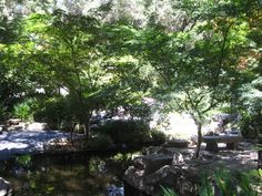 Field Trip Friday: Descanso Gardens - GoExploreNature.com