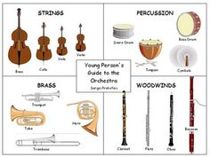 Some pictures of the various instrument families.