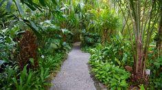 トロピカル スパイス ガーデン / ペナン|エクスペディア