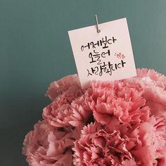어버이날 모든 상품엔 사랑의 메세지가 담긴 캘리픽을 함께드려요 . . 카톡_mondayea / llllcooo 매장_ 070-8777-4644 . . . #홍대 #상수 #꽃집 #먼데이마켓 #mondaymarket #스타일플라워 #꽃스타그램 #인스타플라워 #flower #꽃모닝 #어버이날 #캘리 #어버이날선물