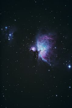 """curt0s: """"Orion nebula with his neighbour. """""""
