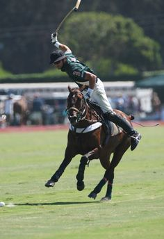 Polo is one of my Favorite sports to watch! Someday, I hope to learn to Play! It's on my Bucket list!