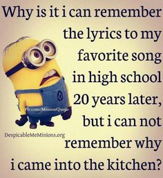 Why is it that I can remember the lyrics to my favorite song in high school 20 years later, but I can not remember why I went to the kitchen?