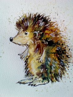 Hedgehog, watercolour painting, splatters, kids illustration, rebecca yoxall art https://www.facebook.com/RebeccaYoxallArt