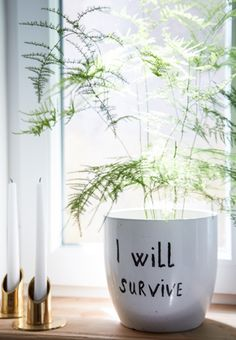 """I will survive"" #plant #pot #painted"