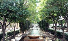 Jardines s'hort del Rei #catedralpalmademallorca #mallorca #igersmallorca http://auroravega.com/look-comodo/