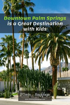 Downtown Palm Springs is a Great Destination with Kids Best Vacation Spots, Family Vacation Destinations, Best Places To Travel, Best Vacations, Vacation Trips, Travel With Kids, Family Travel, Palm Springs Map, Travel Photos