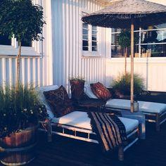 .@victoriaskoglund | Tycker vår lilla lounge börjar bli riktigt mysig nu när fjädergräset och de svarta trifoliumen vuxit till sig i ektunnorna.