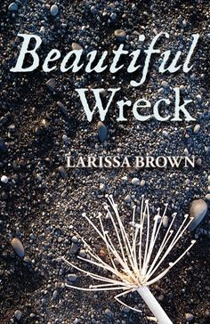 """Beautiful Wreck, by Larissa Brown - a speculative fiction novel (and the inspiration for Larissa's """"My Viking Love Song"""" collection of shawl knitting patterns).  In a bleak future built on virtual reality, Ginn is a romantic who yearns for something real. She designs environments for people who play at being Vikings. But when her project goes awry, she's stranded in the actual 10th century, on a storybook farm in Viking Iceland."""