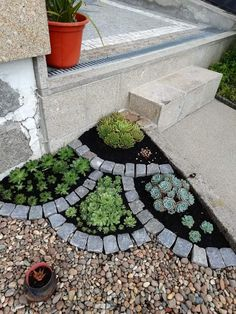 Untitled landscaping with rocks Diy Fence, Backyard Fences, Backyard Landscaping, Fence Ideas, Garden Ideas, Bed Ideas, Small Front Yard Landscaping, Garden Projects, Small Gardens