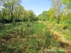 A dry Illinois & Michigan Canal at Gebhard Woods State Park Morris