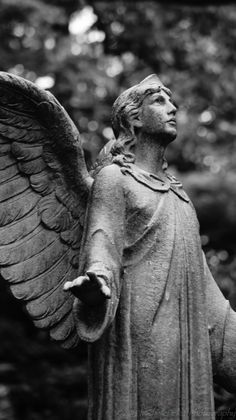 #statue #angel #cemetery