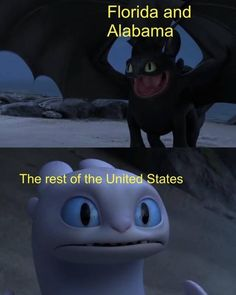 How to train your dragon Alabama memes should be invested in. Dankest Memes, Funny Memes, Jokes, Cartoon Memes, Httyd, Comic, How To Train Your Dragon, Super Funny, Crazy Funny
