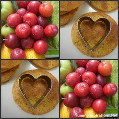 Yummy Inspirations: GAPS Intro Diet