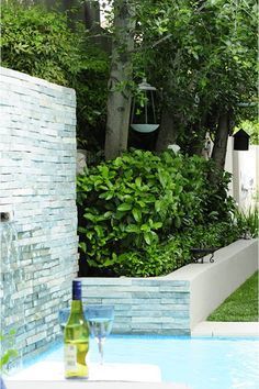 This Jo'burg garden's most unattractive features – its boundary walls – were turned into an