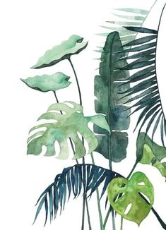 illustration art / illustration art _ illustration art drawing _ illustration art vintage _ illustration art girl _ illustration art watercolor _ illustration art wallpaper _ illustration art black and white _ illustration art design Art Illustration Vintage, Illustration Art Dessin, Illustration Inspiration, Illustration Botanique, Plant Illustration, Watercolor Illustration, Art Illustrations, Watercolor Plants, Watercolor Paintings