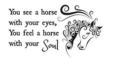 You see a Horse with your Eyes You feel a Horse with your Soul