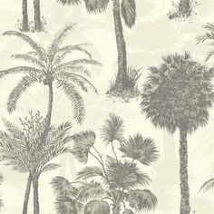Natural Coconut Grove Wallpaper from the Sophie Conran Reflections collection features a tropical palm tree motif. Samples, free UK delivery and next day delivery available. Feather Wallpaper, Geometric Wallpaper Decor, Copper Wallpaper, Cream Wallpaper, Striped Wallpaper, Wall Wallpaper, Pattern Wallpaper, Tropical Wallpaper, Botanical Wallpaper