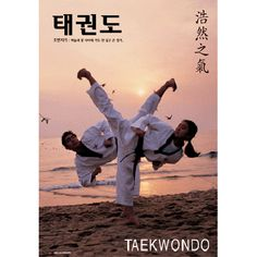 Taekwondo || it would be sorta cool if Peter and I did a picture like this...