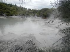 Boiling Mud Pits of Rotorua, New Zealand. Reminds me of the bog of eternal stench from Labyrinth! Travel