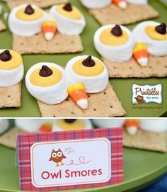Owl S'mores! Great to make at a sisterhood event or for an overnight camping trip!